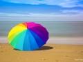 104. Franck TAVERNIER - Le parapluie et la mer