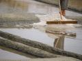 195 .Delphine HOUDEMOND - Entre sel et mer