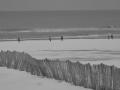 35. Léa JOLY - Courir sur le sable enneigé de la Côte d'Opale