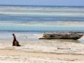 C. TRAPP - Culture d'algues à Zanzibar